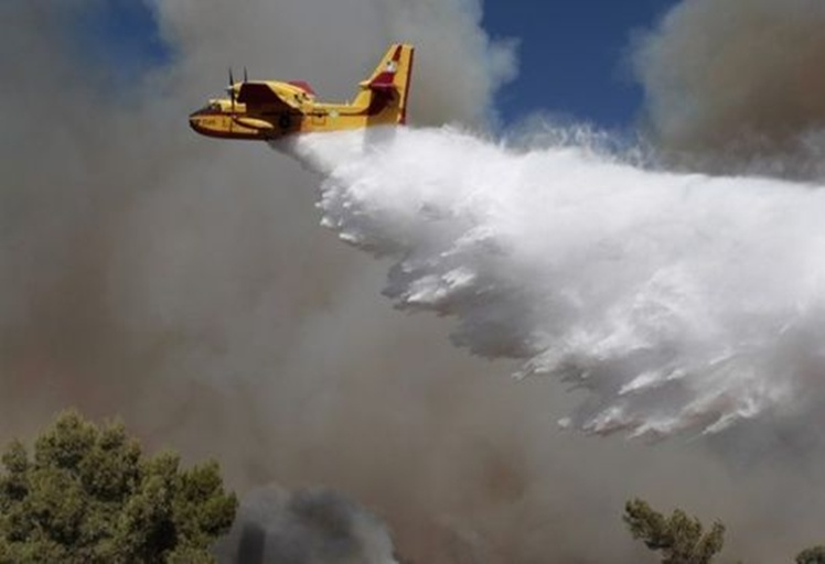 حريق يلتهم 95 هكتارا من غابات تلسمطان بشفشاون