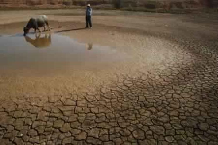 هذه التدابير التي اتخذتها الحكومة لمواجهة الجفاف