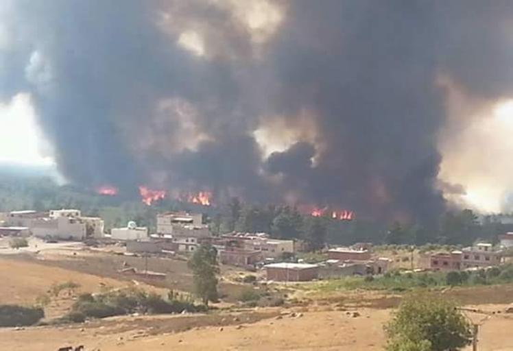 حريق غابوي يأتي على أزيد من 60 هكتارا شمال المملكة
