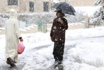 ارتفاع مهول في أسعار المواد الأولية بإقليم شفشاون بسبب التساقطات الثلجية