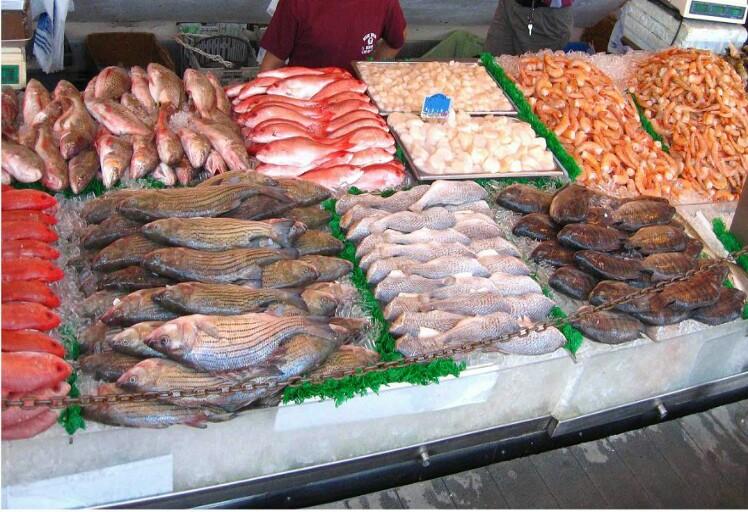 تحذير هام للمغاربة ..لسلامتك لاتأكلوا هذه الأسماك فإنها خطيرة جدا