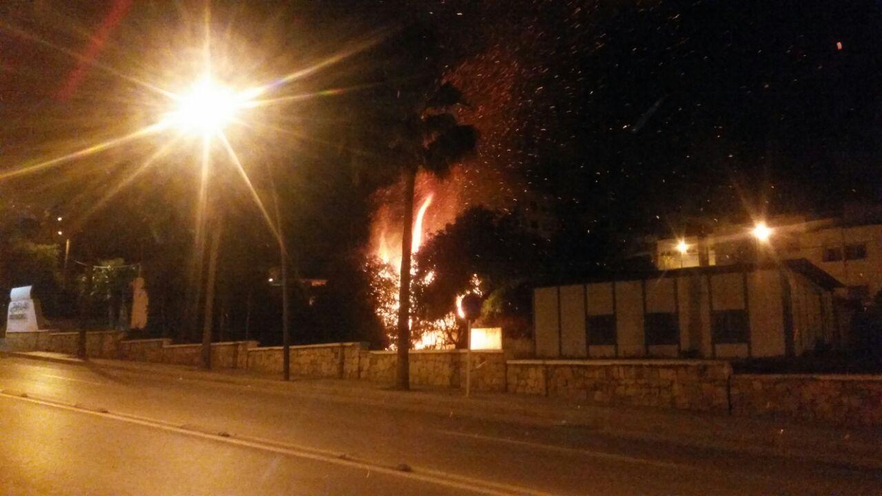 فيديو: هكذا التهمت النار الأحراش والأشجار المجاورة لمخفر أمن المضيق